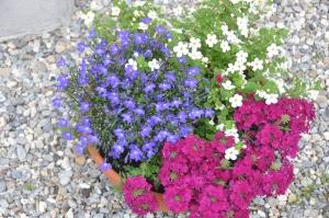 Blumenvor dem Haus
