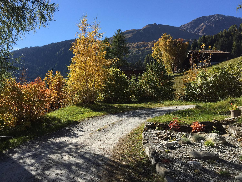Einfahrt im Herbst
