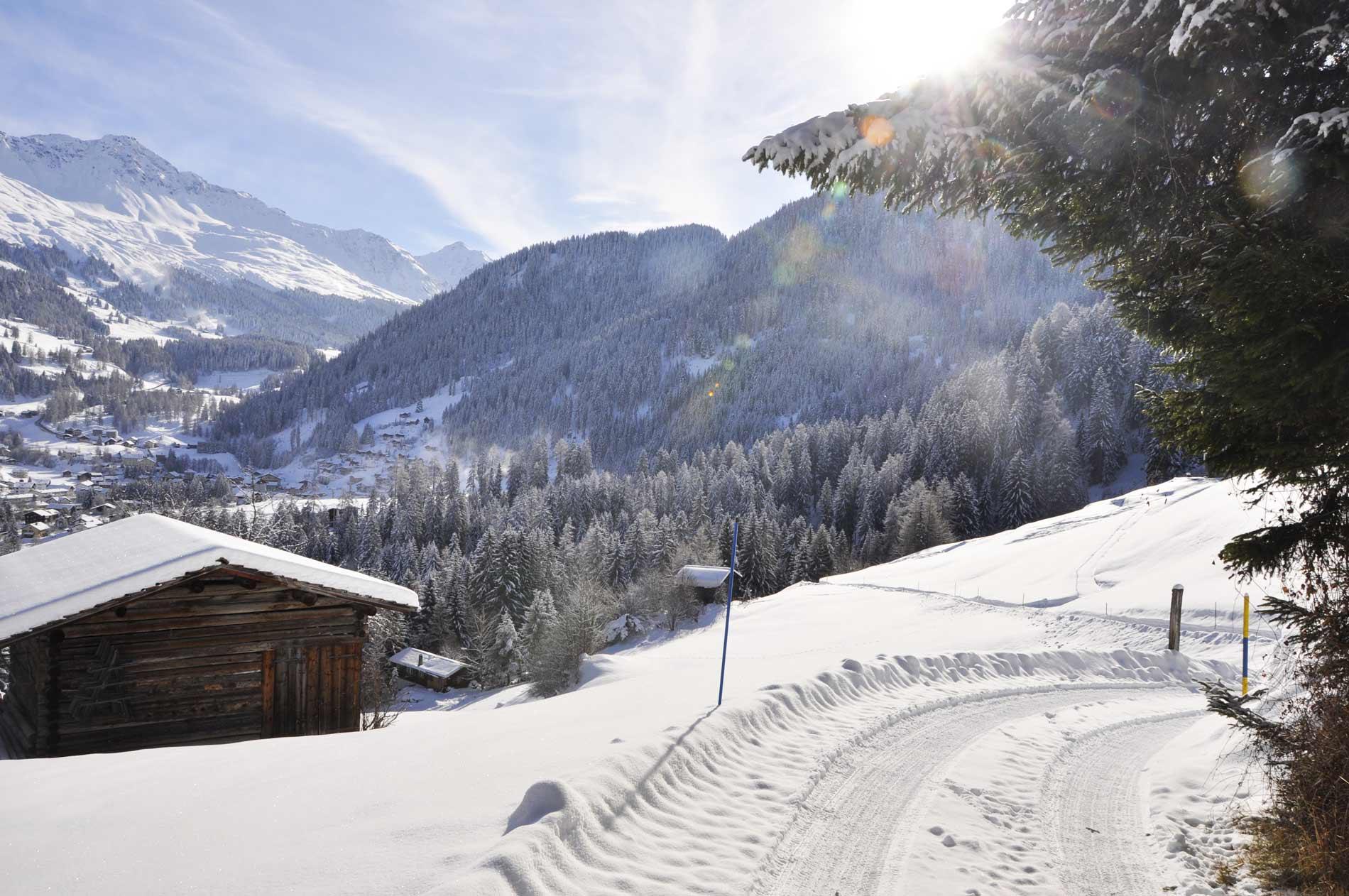 Weg ins Tal im Winter